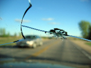 Rock chip on windshield